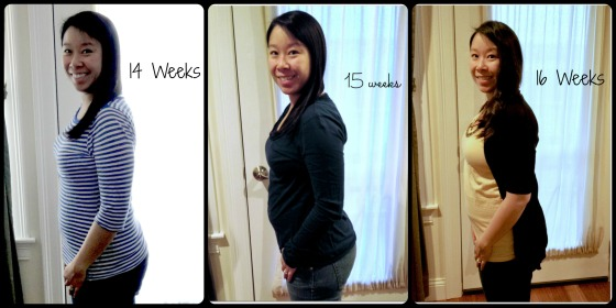 collage_14to16weeks